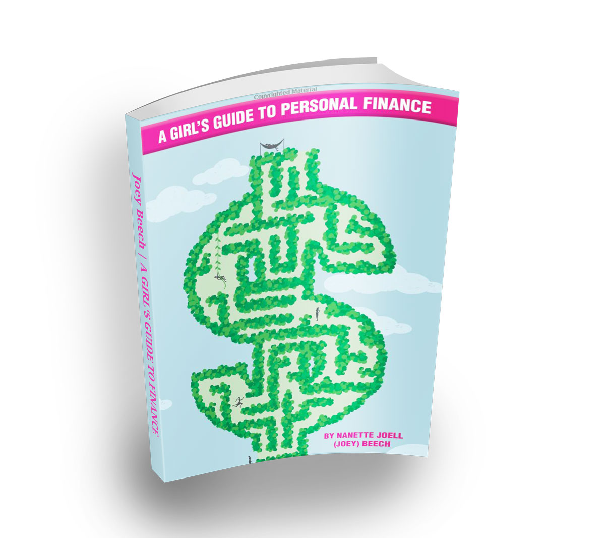 A Girl's Guide to Finance Book Image